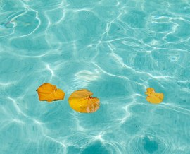 velveteyes.net_arianna-lago_09