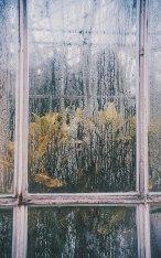 velveteyes.net_olga-wysopal_05