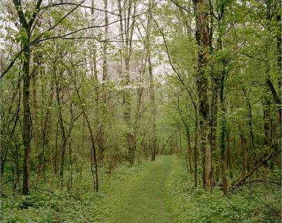 Enclosure Trail, Indian Mound Reserve, Greene County, OH