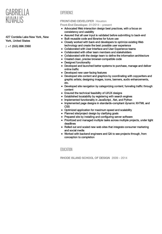 application developer resume examples 2014