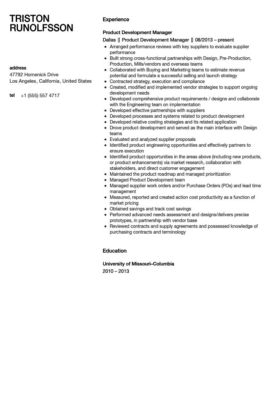 new product development sample resume