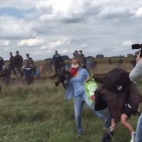 Migranti, giornalista ungherese prende a calci donne e bambini in fuga