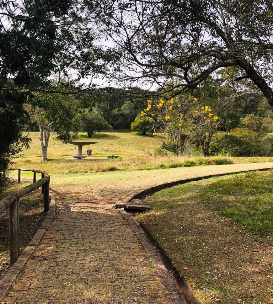 caminho para lagoa dourada em vila velha