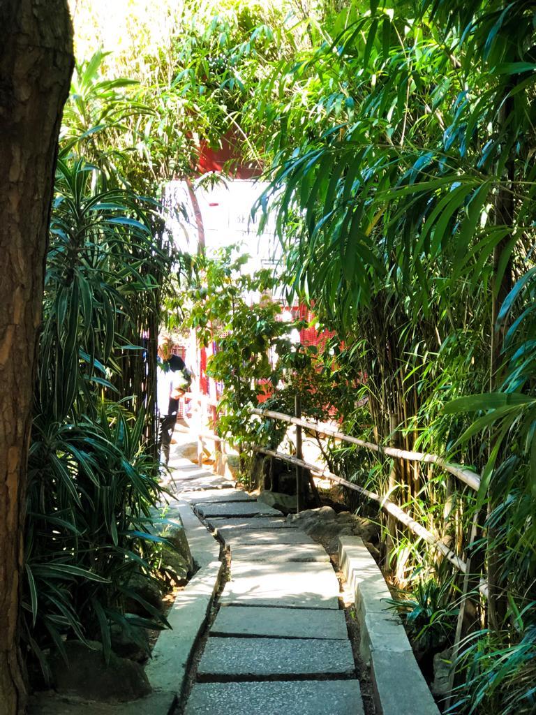 Jardim Oriental Liberdade