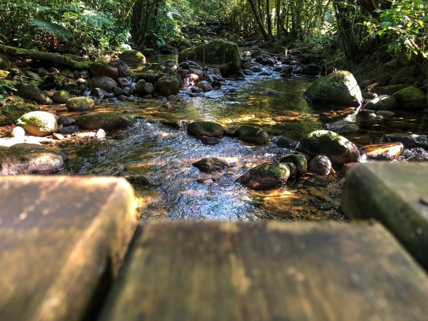 rio que passa pela trilha da mata