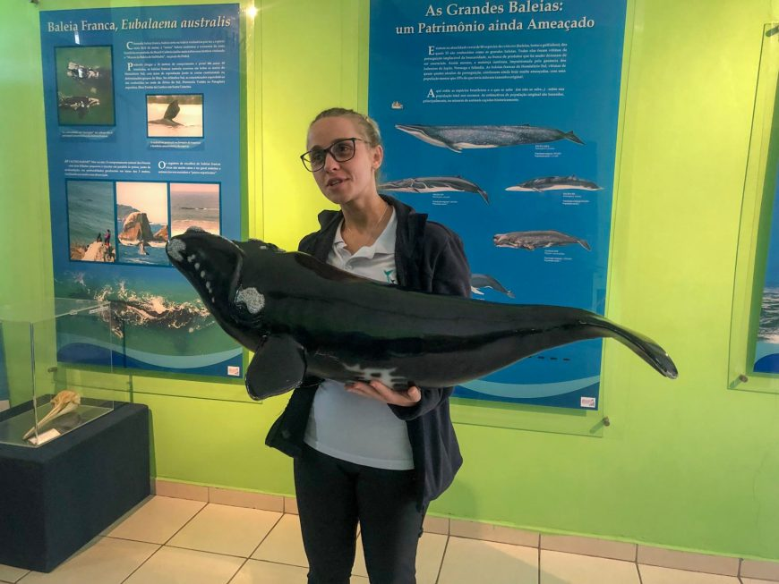 Kátia, que nos deu uma aula sobre as baleias