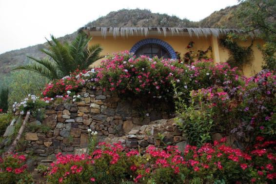 hotelgloria_urmiri_171668382