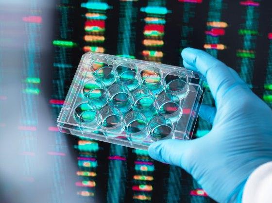 Los nuevos productos de Synthego brindan a los científicos acceso a material genético editado