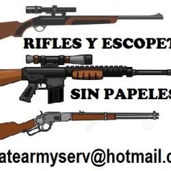 01 AAAAAA GUN RIFLE