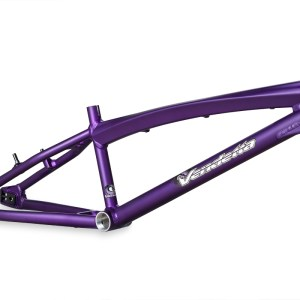 pro_purple