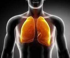 Desintoxicación de los pulmones