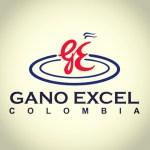 Gano Excel Colombia: Productos con Ganoderma Lucidum, negocio, dónde comprar