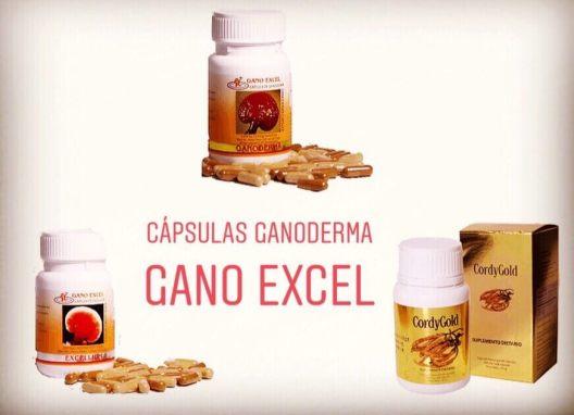 CAPSULAS DE GANODERMA (90) Y EXCELLIUM GANO EXCEL