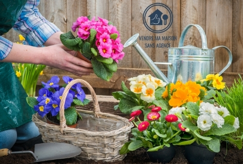 Garden Staging - les plantes