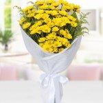 Chamomile Yellow Bouquet 25 Flower, Venera Flowers, online flower delivery dubai