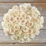 Rose White Super 50 Flower, Venera Flowers, online flower delivery dubai
