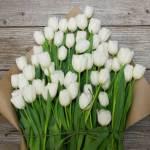 Tulip White Flower, Venera Flowers, online flower delivery dubai