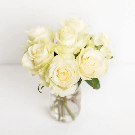 Rose20White20Vase20720Flower20Venera20Flowers202 1