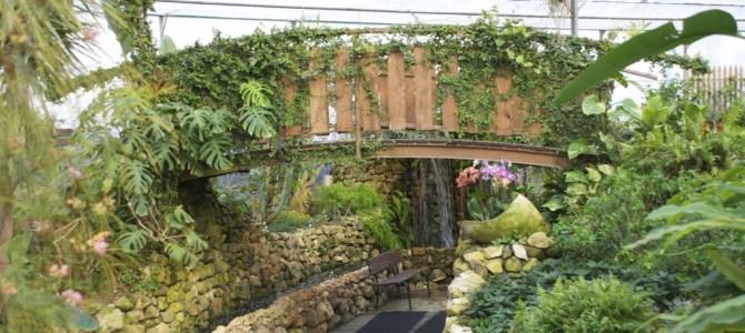 Oasi Rossi e la casa delle farfalle