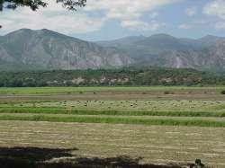 Valle del río Tocuyo