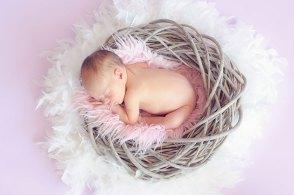 鳥の巣風バスケットの中で眠る赤ちゃん