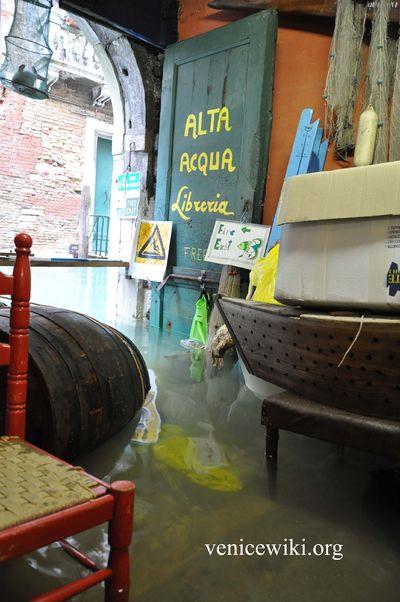 Libreria Acqua Alta  Venice Wiki la guida collaborativa di Venezia