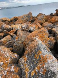 Beautiful rusty spots on the rocks!
