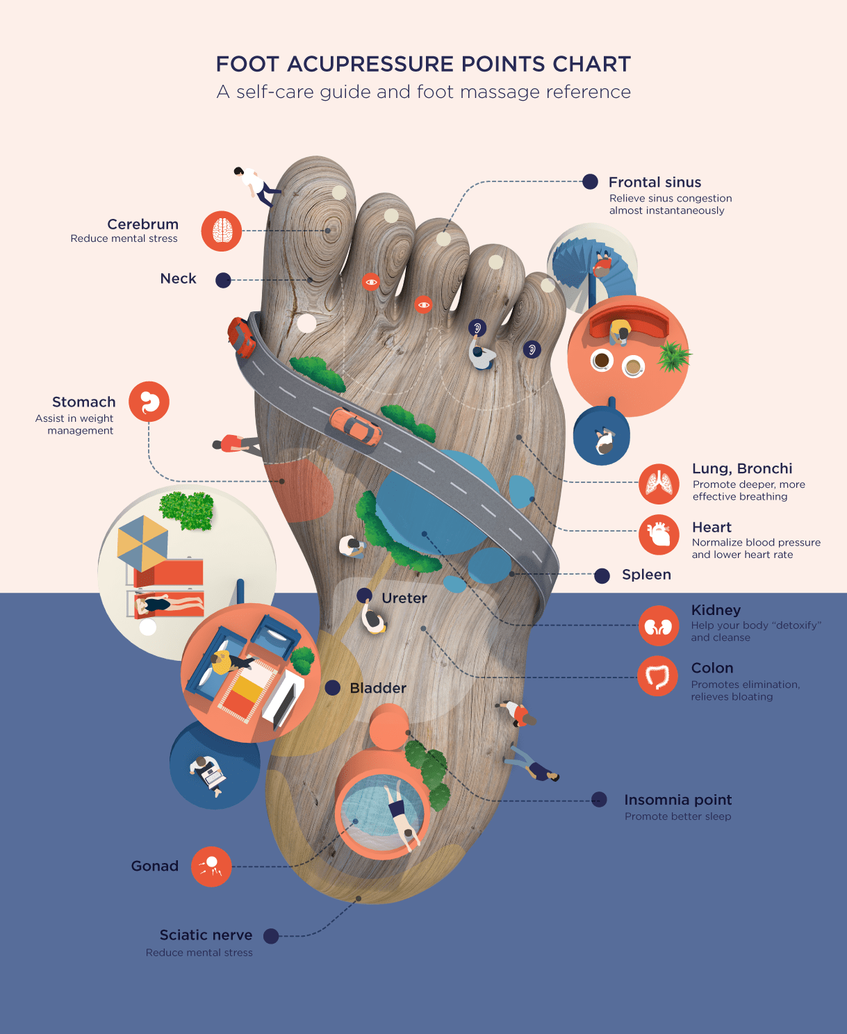 Foot Acupressure Points Chart A Self Care And Foot Massage Reference