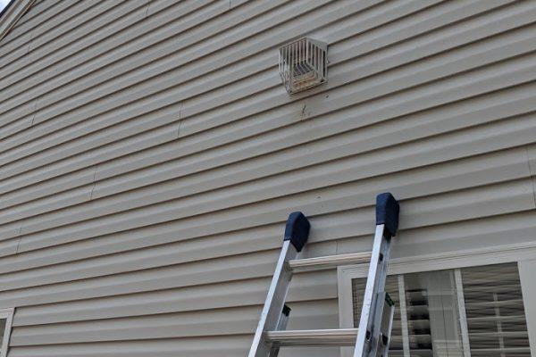 dryer vent bird guard