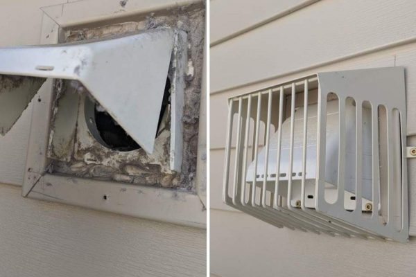 bird guard dryer vent before after