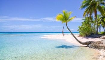 polynesie-deprime-post-vacances-header