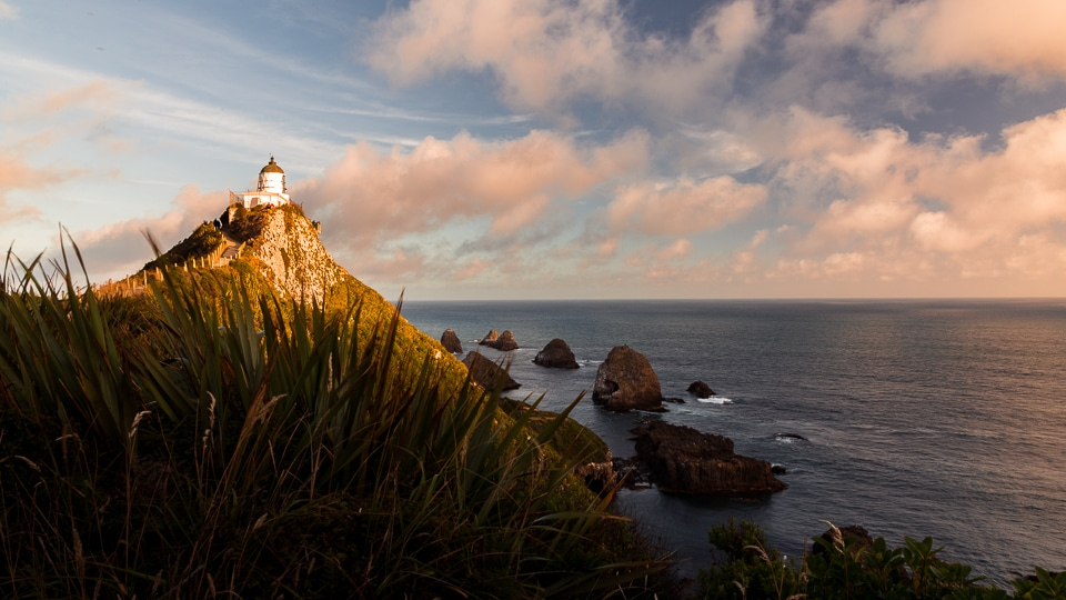 NZ-nugget-phare