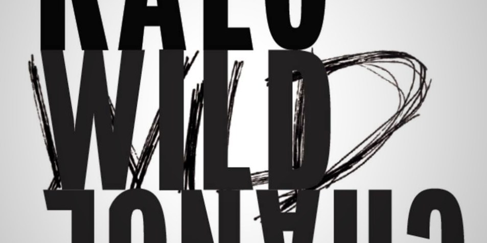CD REVIEW: Wild Change by KALO -