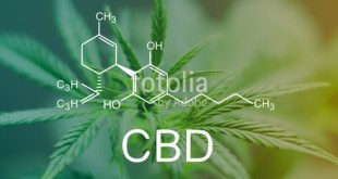 How CBD Helps in Improving Your Sleep?