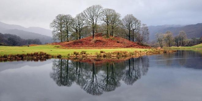 Trees in autumn by a lake in The Lake District, England