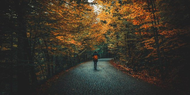4 Ways To Prepare Your Body For A Healthy Fall