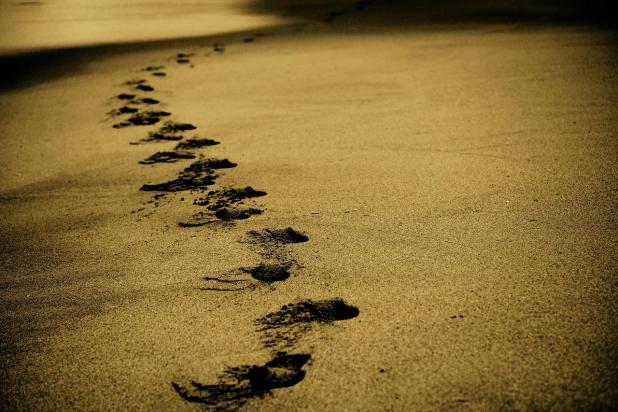A line of footprints in the sand