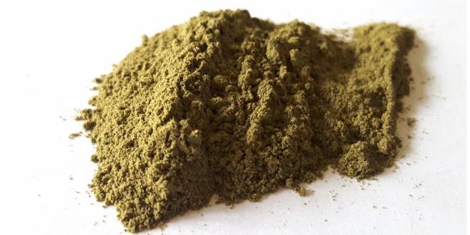 The New Therapeutic Plant: 5 Health Benefits of Kratom