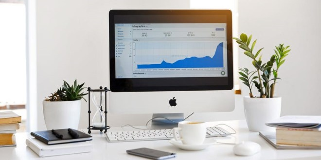 Digital Influencers: A Beginner's Guide to Influencer Marketing