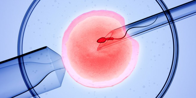 Know the Cost of IVF Procedures in India