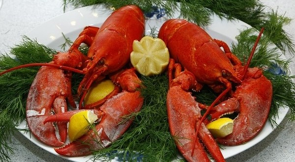 Cooking Lobster in Your Own Kitchen – like a Cosmopolitan Chef