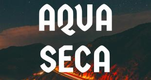 INTERVIEW: Aqua Seca