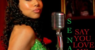 SINGLE REVIEW: Say You Love Me by SENANI