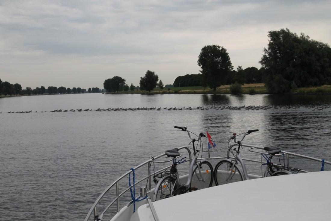 F:\Solitaire\Biesbosch 6_15\Fotos\8 bis Lithse Ham 07_07_15\IMG_1072.JPG