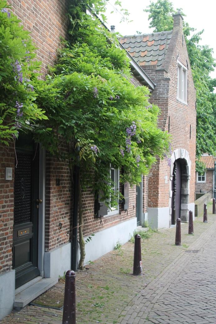 F:\Sommer Tour 2016\Fotos\8 bis Hertogenbosch\IMG_1987.JPG