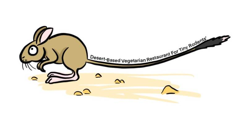 cartoon of a desert hopping mouse representing long tail keywords
