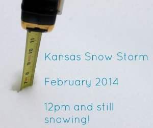 Kansas Snow Storm 2014 : Live Blog