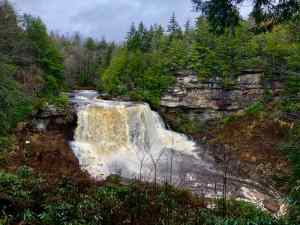 18+ Surprising West Virginia Facts