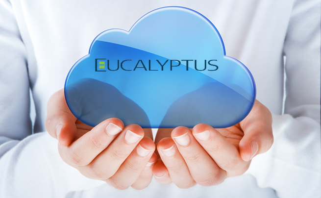 ss-eucalyptus-funding-open-source