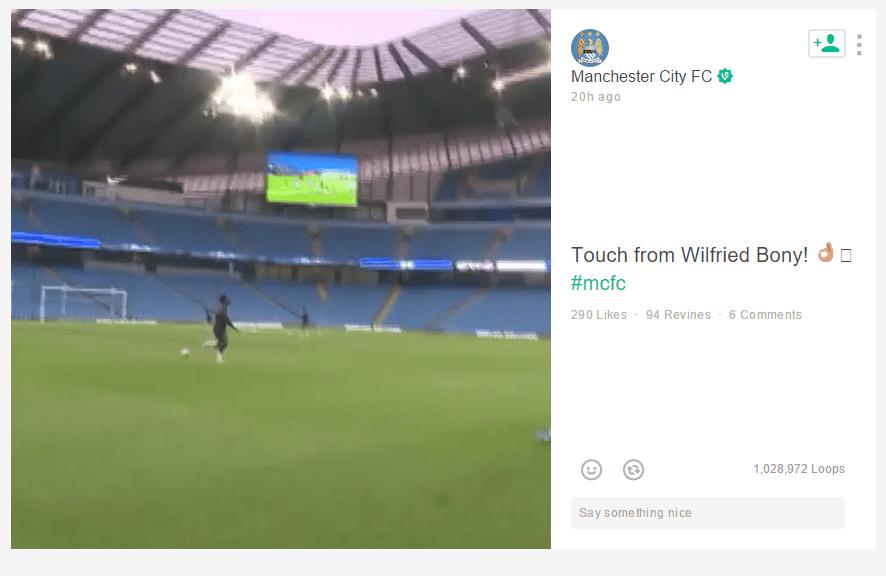 Manchester-City-Wilfried-Bony